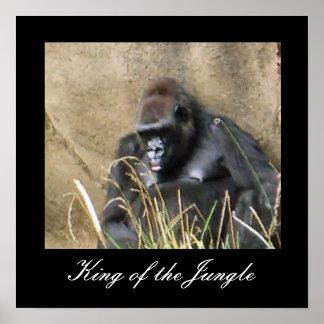 König des Dschungels Plakatdrucke