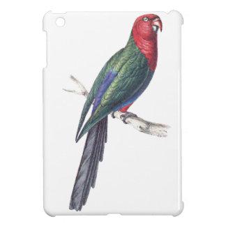 König Parakeet iPad Mini Schale