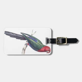 König Parakeet Kofferanhänger