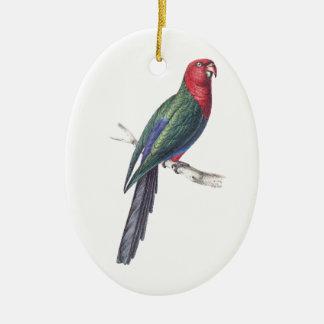 König Parakeet Ornamente