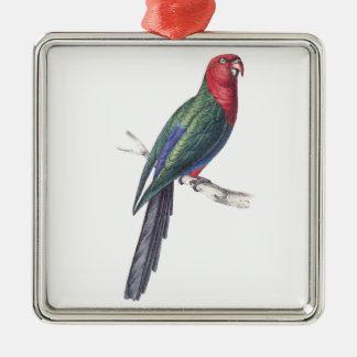 König Parakeet Quadratisches Silberfarbenes Ornament