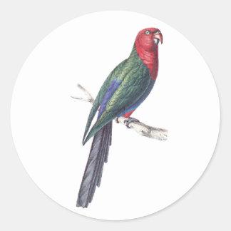 König Parakeet Runder Aufkleber