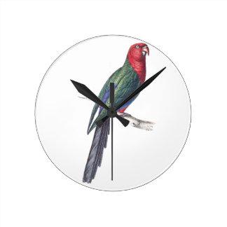 König Parakeet Wanduhren