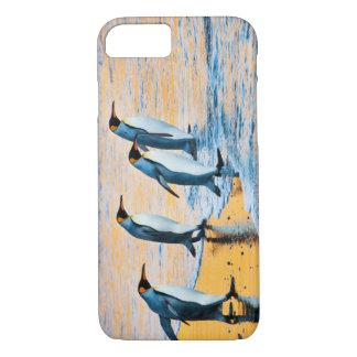 König Pinguine am Sonnenaufgang iPhone 8/7 Hülle