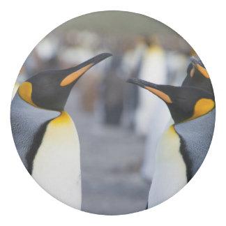 König Pinguine Radiergummi