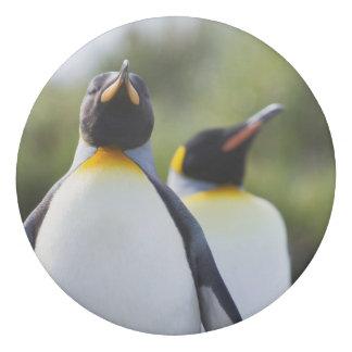 König-Pinguine Radiergummi