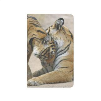 Königlicher bengalischer Tiger und Junge eine - Taschennotizbuch