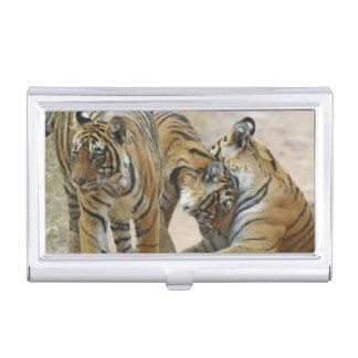 Königlicher bengalischer Tiger und Junge eine - Visitenkarten Etui