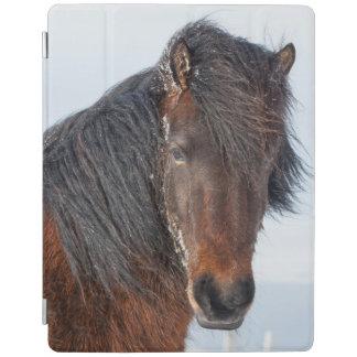 Königlicher isländischer PferdeHeadshot iPad Hülle