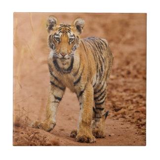 Königliches bengalisches Tigerjunges in Bewegung Fliese