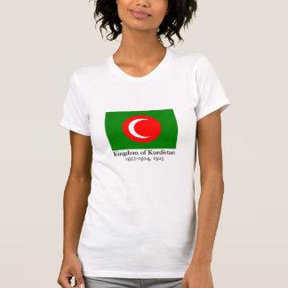 Königreich der Kurdistan-Flagge (1922-1924, 1925) T-Shirt