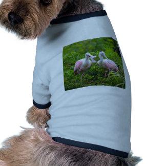 Können Sie mich jetzt hören Ringer Hunde-Shirt