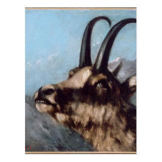 Kopf der Gazelle durch Gustave Courbet Postkarte