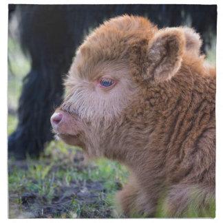 Kopf des neugeborenen schottischen Hochländerkalbs Serviette
