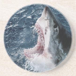 Kopf des Weißen Hais Getränkeuntersetzer