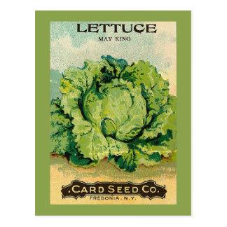 Kopfsalat-Samen-Satz Postkarte