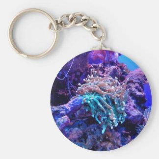 Korallenriff Schlüsselanhänger