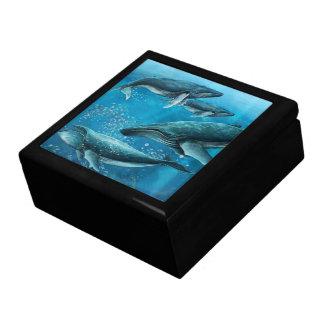 Korallenriff-Waletrinket-Kasten Schmuckschachtel