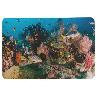 Korallenriffbodenmatte Bodenmatte