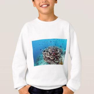 Korallenrote Insel Sweatshirt