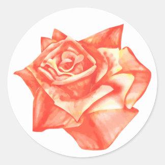 Korallenrote Rosen-einfacher eleganter Runder Aufkleber