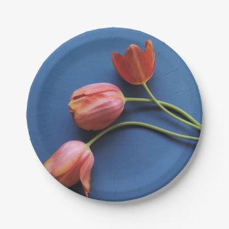 Korallenrote Tulpen auf Blau Pappteller