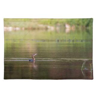 Kormoranvogel, der friedlich schwimmt tischset