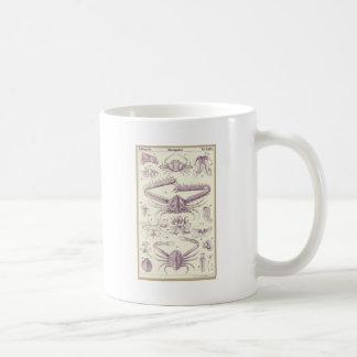 Krabben Kaffeetasse