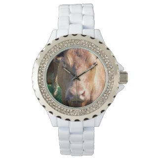 Kräftiges Brown-Kuh-Gesicht, Uhr