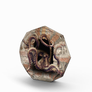 Kraken-Schutz-Preis Acryl Auszeichnung