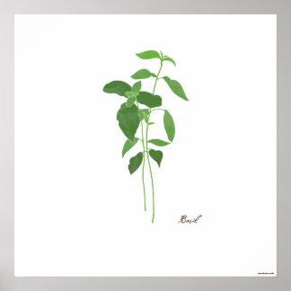 Kraut-botanischer Druck der Poster