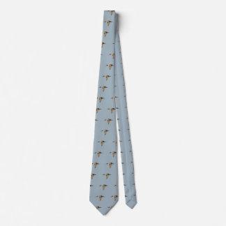Krawatte der Spießenten-Ente im Flug (mit des