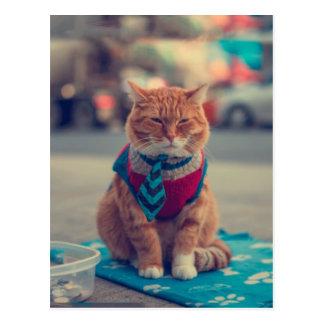 Krawatten-beige Katzen-sitzendes Bitten Postkarte