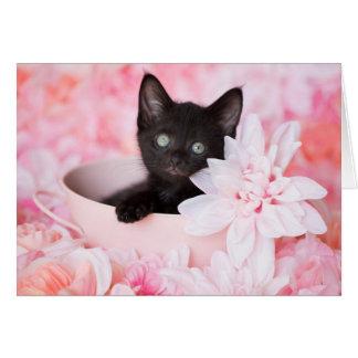 Krawatten-schwarzes Kätzchen-Rosa leeres mit Karte
