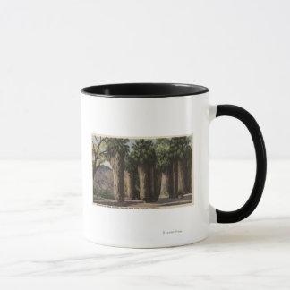 Kreis der Palmen, Andreas-Schlucht Tasse