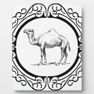 Kreis des Kamels Fotoplatte