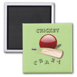 Kricket-Magnet Quadratischer Magnet