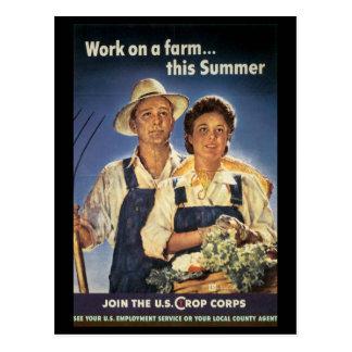 Kriegs-Arbeits-Bemühung - Arbeitsplakate - ernten Postkarten