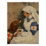 Kriegs-Krankenschwester mit golden retriever 1917 Plakatdrucke