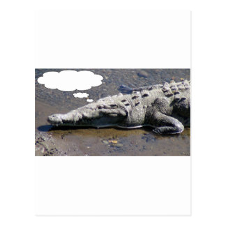 Krokodil träumend, addieren Sie Ihren eigenen Postkarte