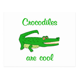 Krokodile sind cool postkarte