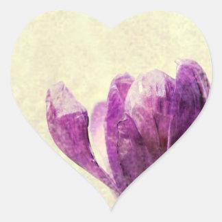 Krokus Herz-Aufkleber