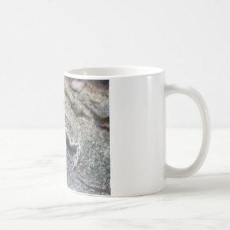 Kröte, Baby Kaffeetasse
