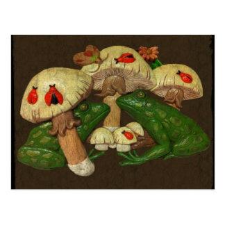Kröten u. Toadstools-Postkarte