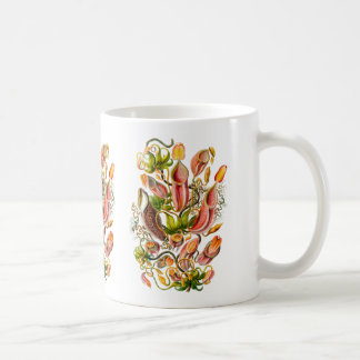 Krug-Pflanzen Kaffeetasse