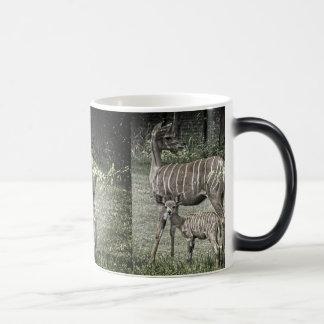 Kudu Antilopen-Mutter mit Baby, Schmutz Verwandlungstasse