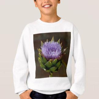 Kugel-Artischocke, Cynara Cardunculus, in der Sweatshirt