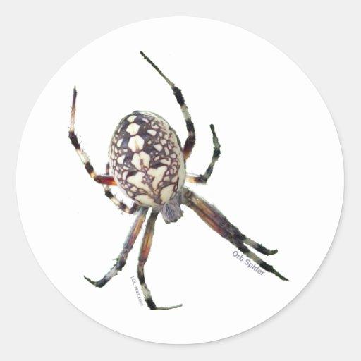 Kugel-Spinne Runder Sticker