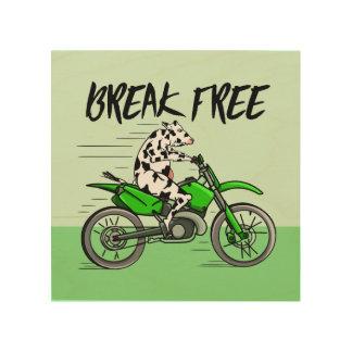 Kuh, die ein Motorcyle reitet Holzleinwand