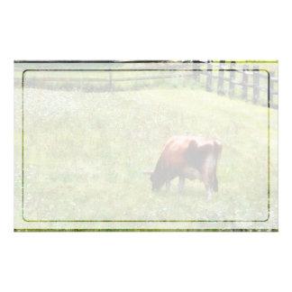Kuh, die in der Weide weiden lässt Briefpapier